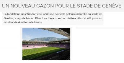 Gazon stade